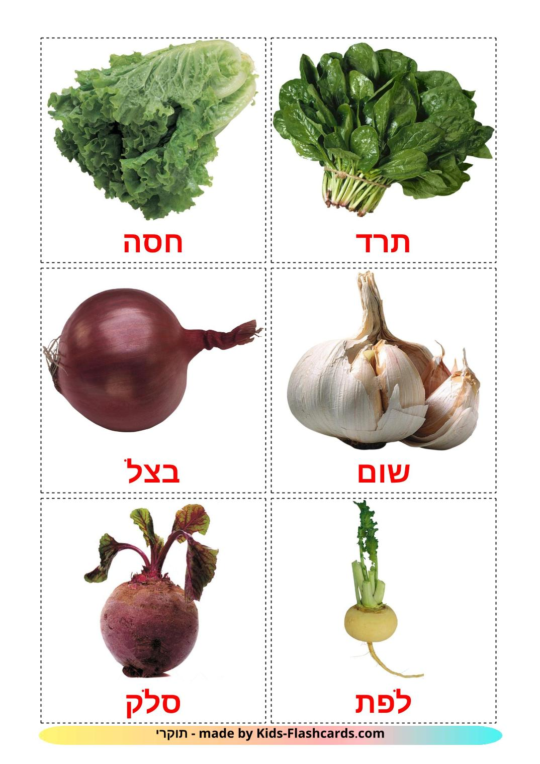 Vegetables - 29 Free Printable hebrew Flashcards