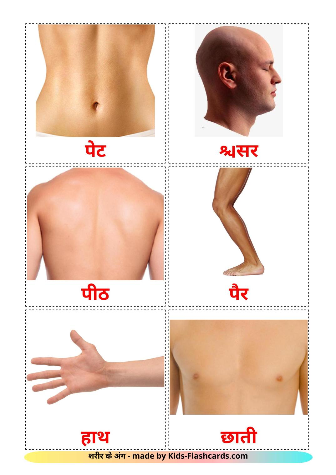 Body Parts - 26 Free Printable devanagari Flashcards