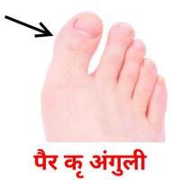 पैर की अंगुली picture flashcards