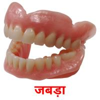 जबड़ा picture flashcards