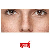 झाई picture flashcards