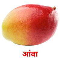 आंबा picture flashcards