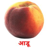 आडू picture flashcards