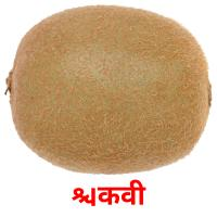 किवी picture flashcards