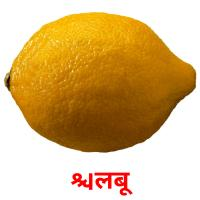 लिंबू picture flashcards