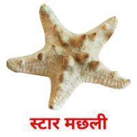 स्टार मछली карточки энциклопедических знаний