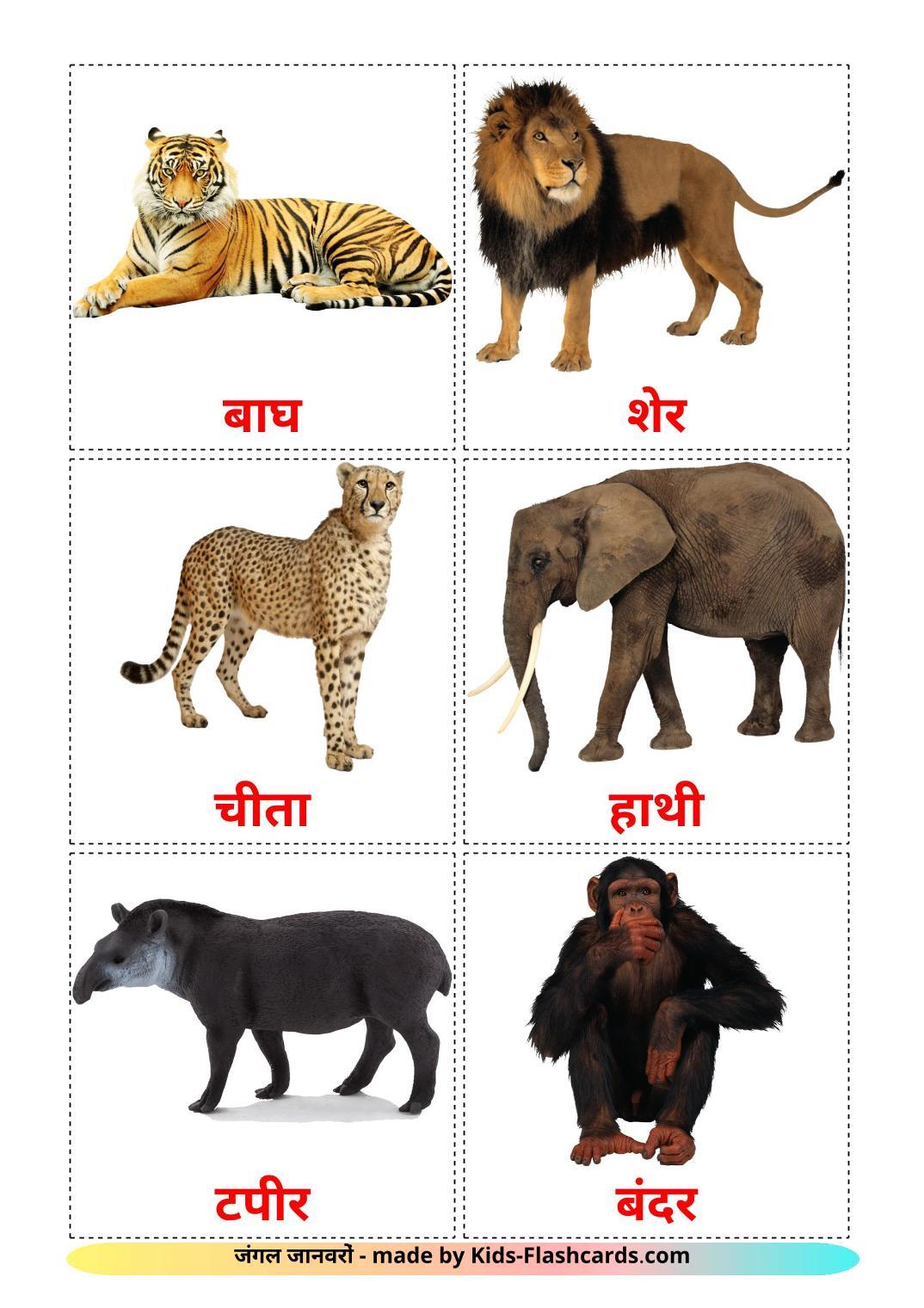 Jungle animals - 21 Free Printable hindi Flashcards