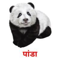 पांडा picture flashcards