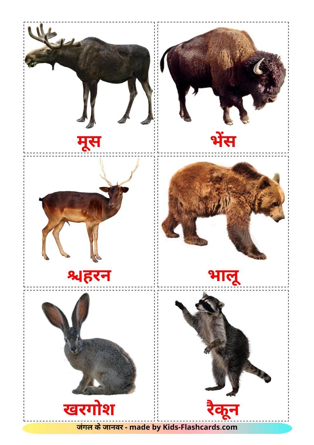 Forest animals - 22 Free Printable hindi Flashcards