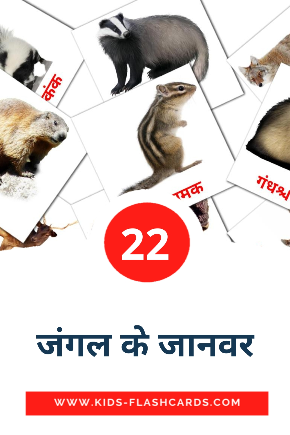 22 जंगल के जानवर Picture Cards for Kindergarden in hindi
