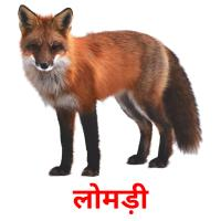 लोमड़ी picture flashcards