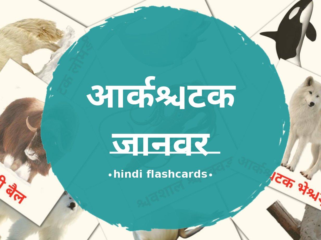 14 карточек Животные арктики для детей на хинди (PDF файлы)