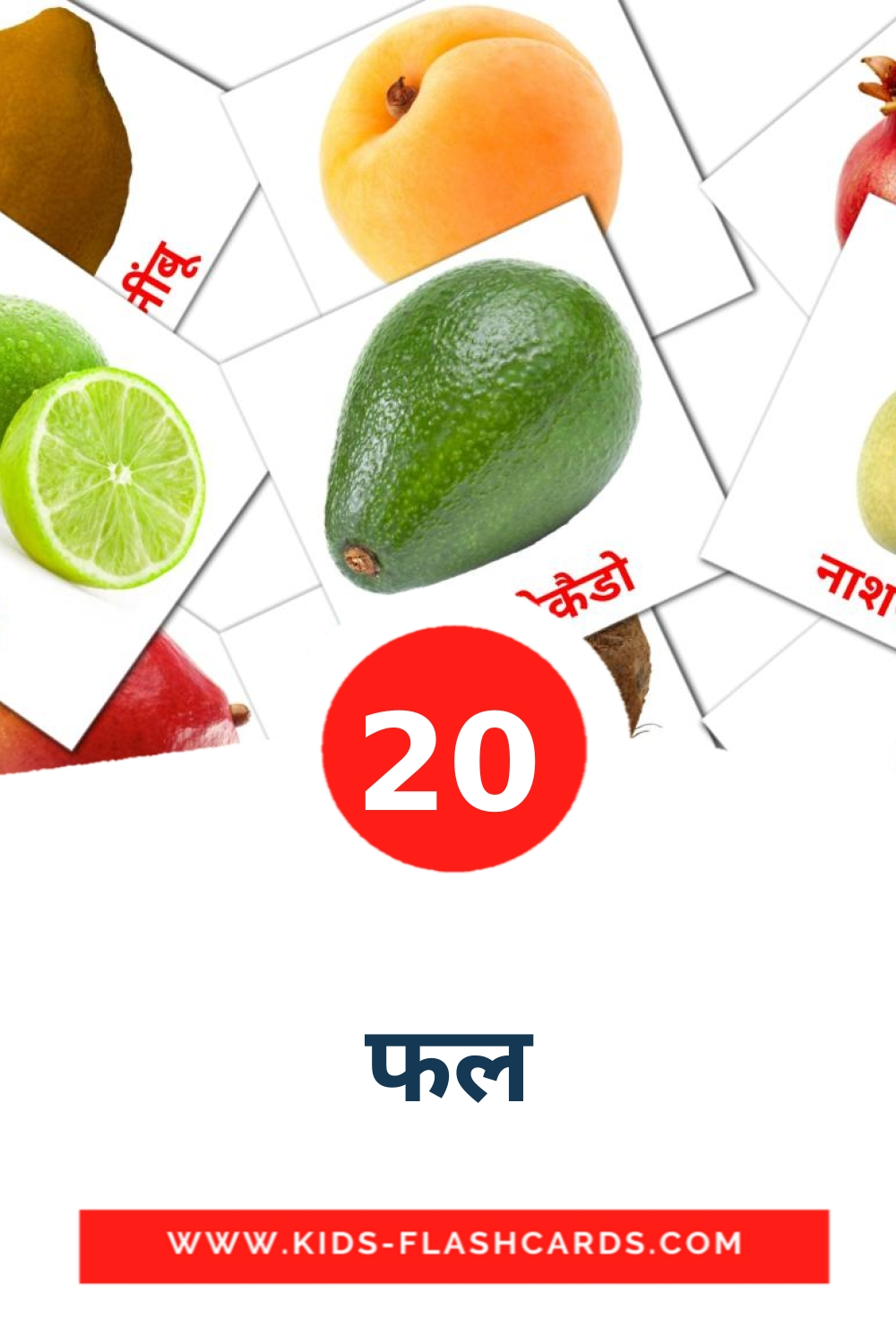 20 फल Picture Cards for Kindergarden in hindi