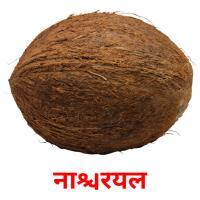 नारियल picture flashcards