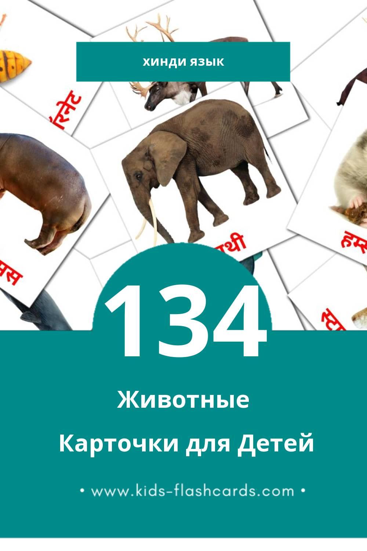 """""""जानवर"""" - Визуальный Хинди Словарь для Малышей (134 картинок)"""