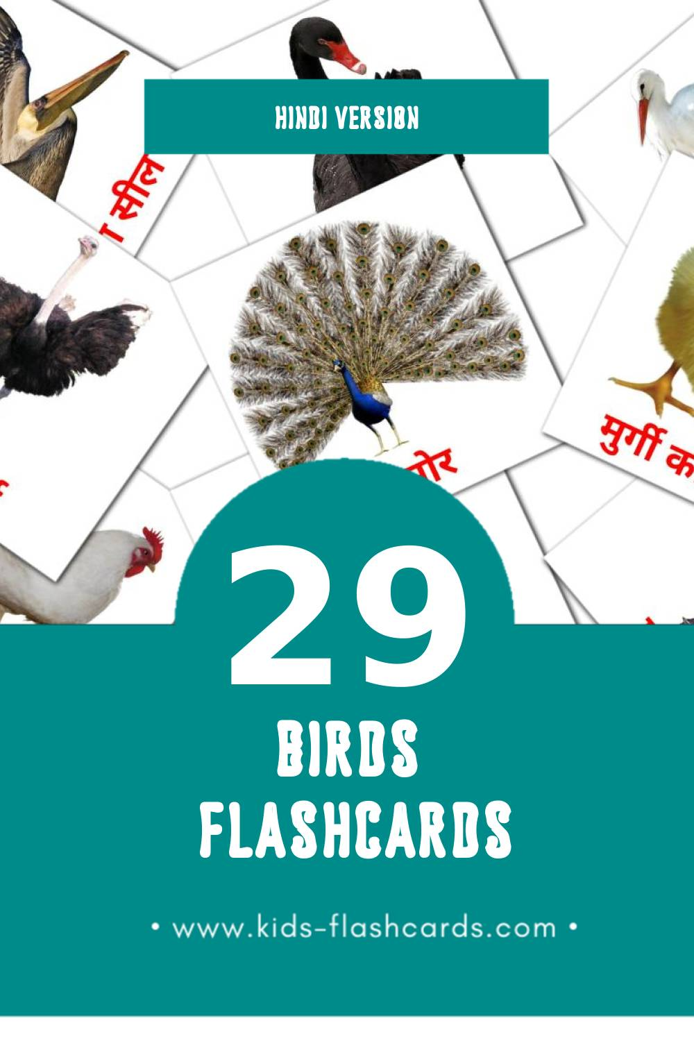 Visual पक्षी Flashcards for Toddlers (29 cards in Hindi)