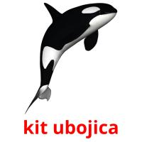 kit ubojica picture flashcards