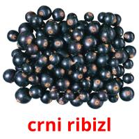 crni ribizl picture flashcards