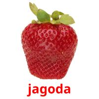 jagoda picture flashcards
