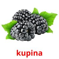 kupina picture flashcards