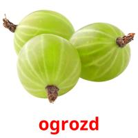 ogrozd picture flashcards