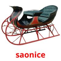 saonice picture flashcards