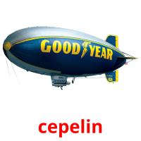 cepelin picture flashcards
