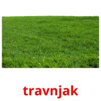 travnjak picture flashcards