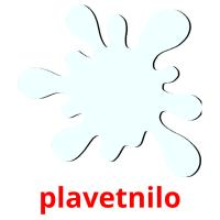 plavetnilo picture flashcards