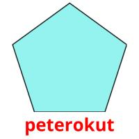 peterokut picture flashcards