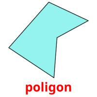 poligon picture flashcards