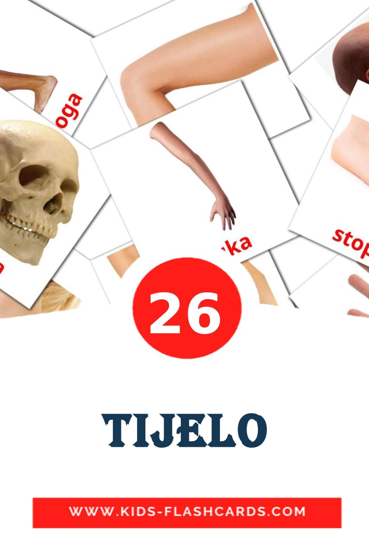 26 Tijelo Picture Cards for Kindergarden in croatian