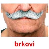 brkovi picture flashcards