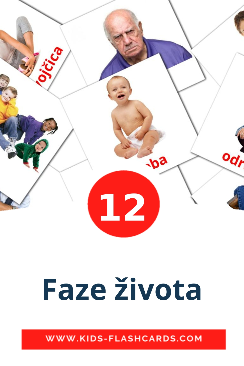 12 Faze života Picture Cards for Kindergarden in croatian