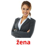 žena picture flashcards