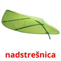 nadstrešnica picture flashcards