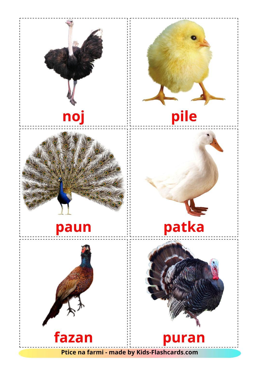 Farm birds - 11 Free Printable croatian Flashcards