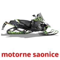 motorne saonice picture flashcards