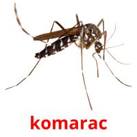 komarac picture flashcards