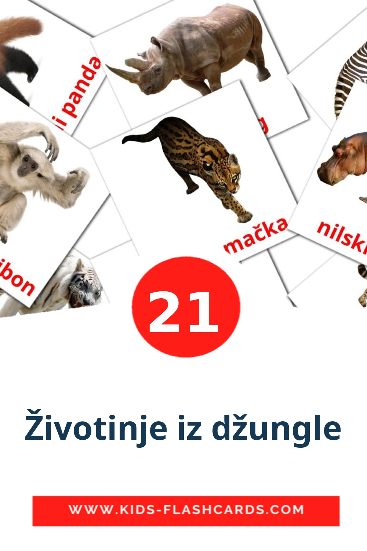 21 Životinje iz džungle Picture Cards for Kindergarden in croatian