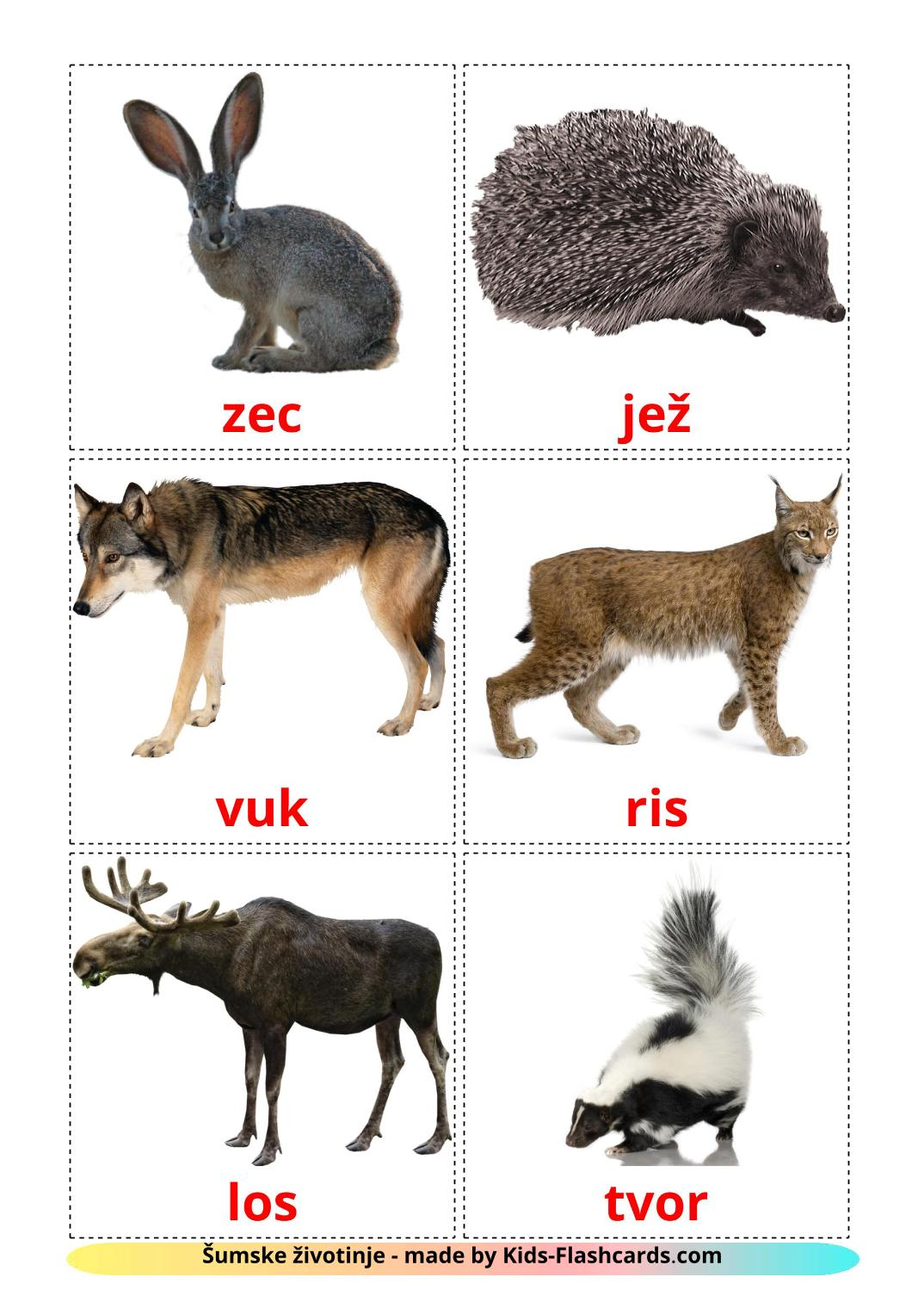 Forest animals - 22 Free Printable croatian Flashcards