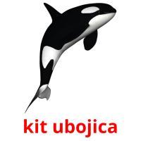 kit ubojica picture flashcards
