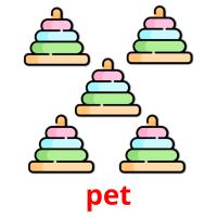pet picture flashcards