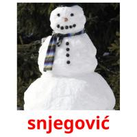 snjegović picture flashcards