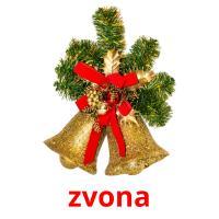 zvona picture flashcards