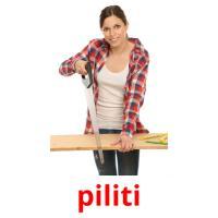 piliti picture flashcards