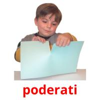 poderati picture flashcards