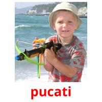 pucati picture flashcards