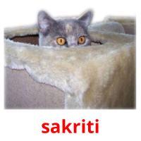 sakriti picture flashcards