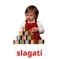 slagati picture flashcards